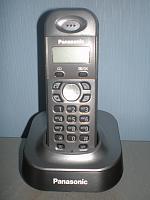 P2160427
