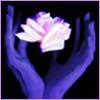 Аватар для ТурбоМиша